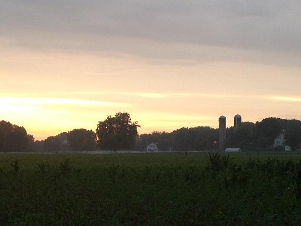 amish farm2