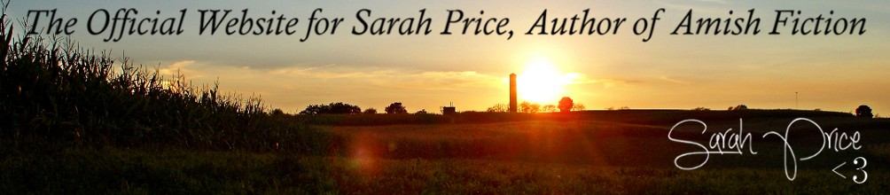 Sarah Price | Amish Author
