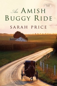 An Amish Buggy Ride-3