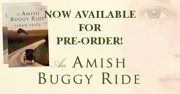 buggy-ride-banner