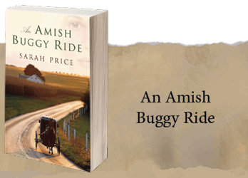 an-amish-buggy-ride-project