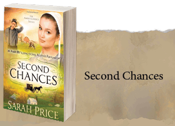 second-chances-project
