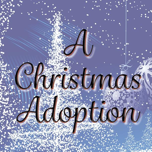 a-christmas-adoption