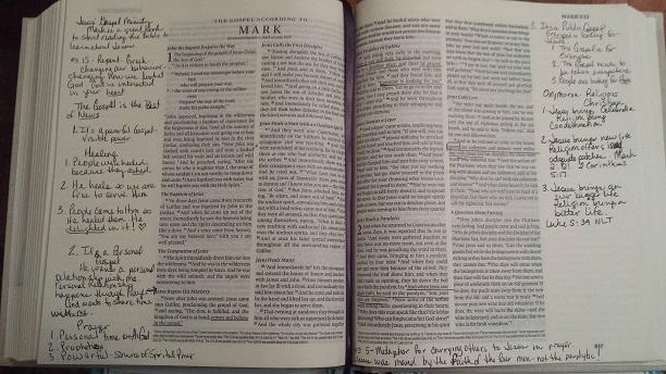 Lisas Bible