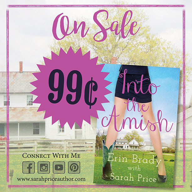 Into the Amish ebook sale