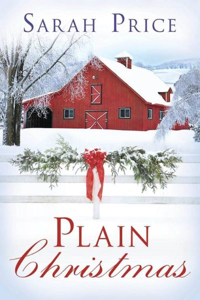 Plain Christmas (Plain Fame Book 6)