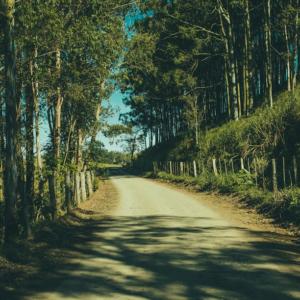 Dusty Little Lanes